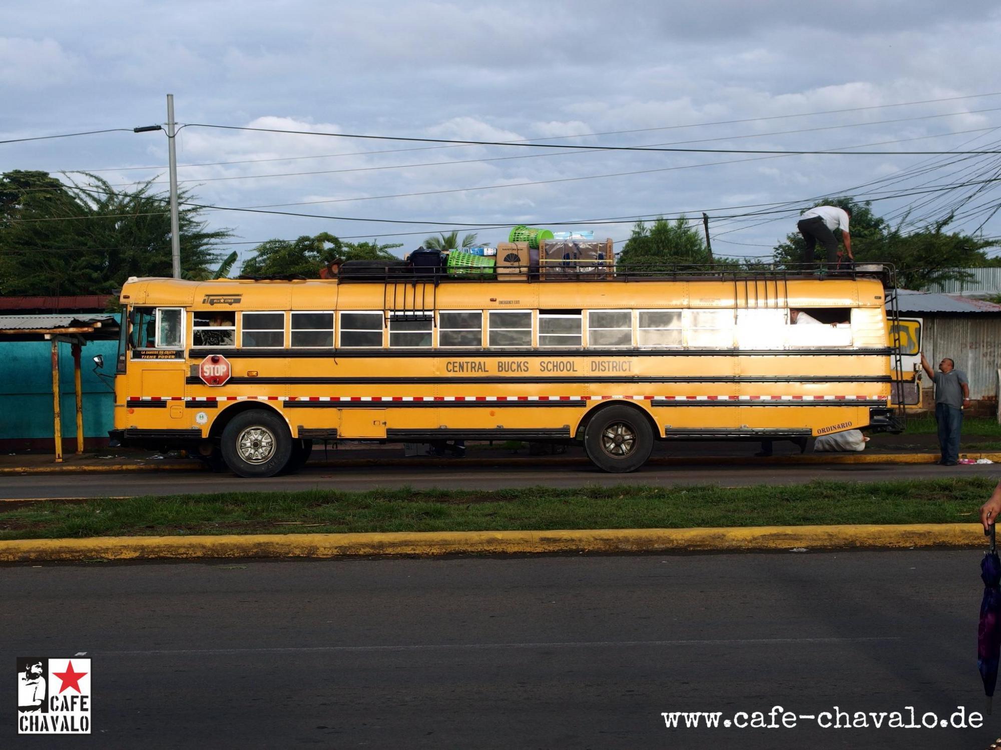 CHavalo Schulbus